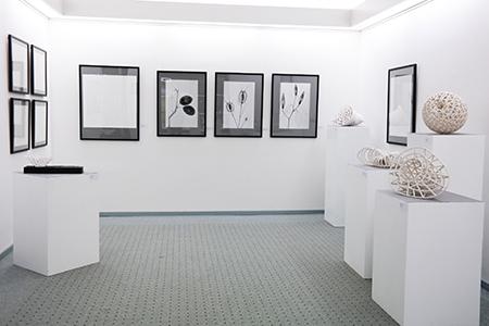 Kabinett Naturrelikt und Kunstkonstrukt